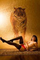 Даша - секс и массаж от 1500 руб. в час